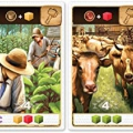 Plan B Games PBG40040EN Century-A New World, Mixed Colours